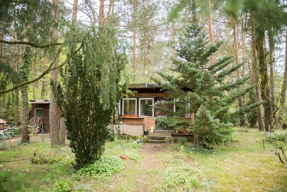 Basdorf, Rosenstraße 4: Bewaldetes Baugrundstück mit Abrisshaus im Bieterverfahren zu verkaufen